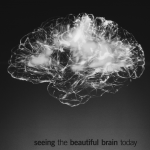 Neurociencia aplicada al aprendizaje